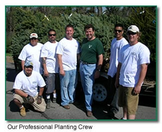 Why Choose Arbor Hills Tree Farm