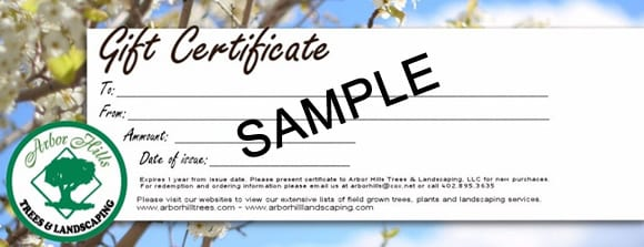 Sample Gift Certificate